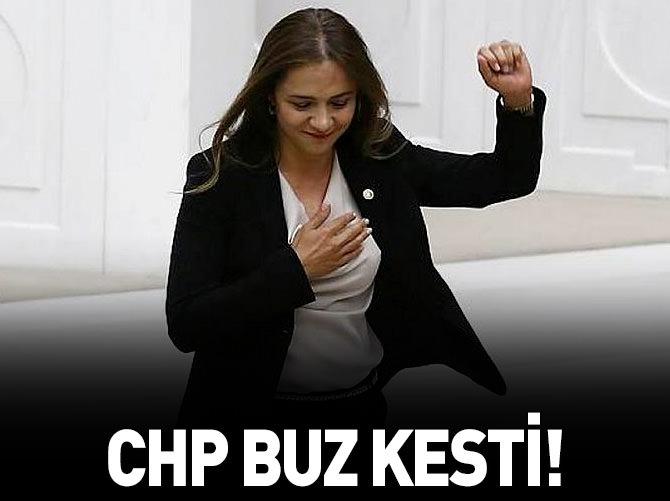 CHP BU HABERLE BUZ KESTİ!