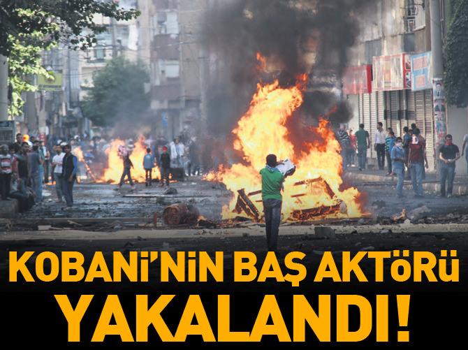 KOBANİ'NİN BAŞ AKTÖRÜ YAKALANDI!