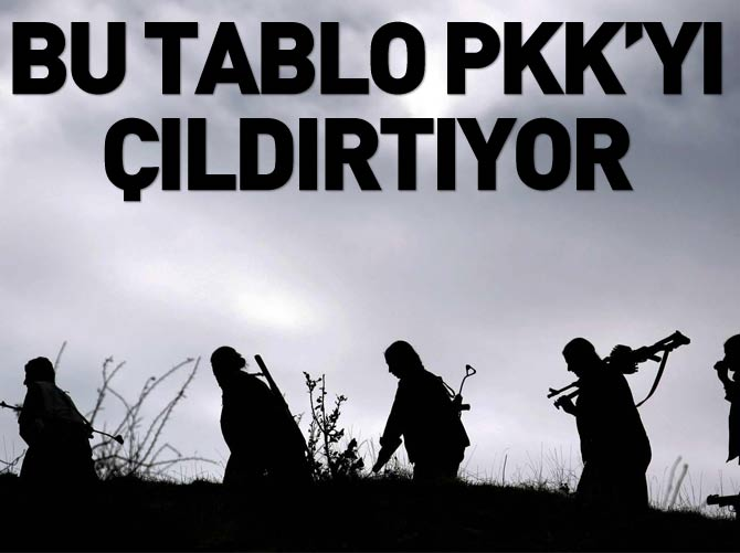 PKK'YI ÇILDIRTAN TABLO