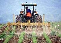 Genç çiftçiye 30 bin TL hibe, başvurular başladı