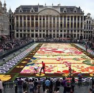 Brüksel'de dev çiçek halı