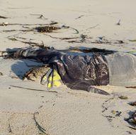 Libya'da göçmen cesetleri karaya vurdu