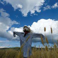 300 tarla korkuluğu festivale hazırlanıyor