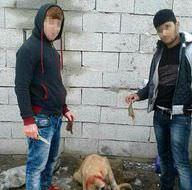 Köpeğe işkence görüntüleri isyan ettirdi!