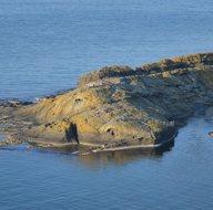 Ordu'daki 'Timsah Adası' görenleri hayrete düşürüyor