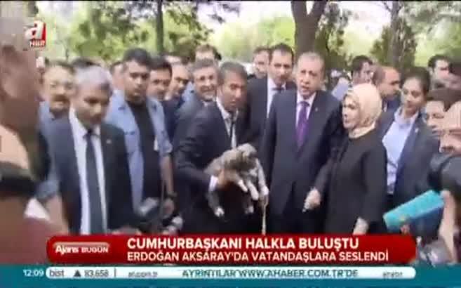 Aksaray'da Erdoğan sevgisi