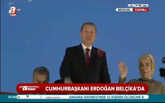 Erdoğan barış güvercini uçurdu