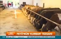 feto-kurban0650