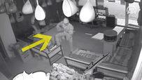 Hırsızlar akort yaptıkları bağlamayı çaldı