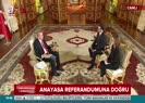 Cumhurbaşkanı Erdoğan: Şu anda 103 bin seçmene 1 milletvekili düşüyor