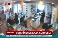 veterinerenkaz