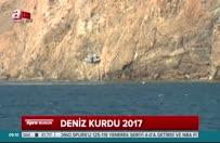 Deniz Kurdu 2017 Tatbikatı