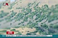 Ağrı'da 29 PKK'lı öldürüldü
