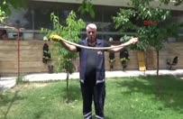 Evin bahçesine giren 2 metrelik yılan yakaladı