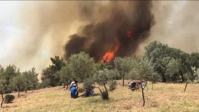 İzmir'deki yangın Manisa'ya sıçradı