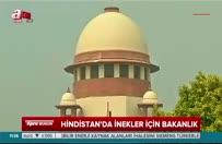 Hindistan'da İnek Bakanlığı kurulacak!